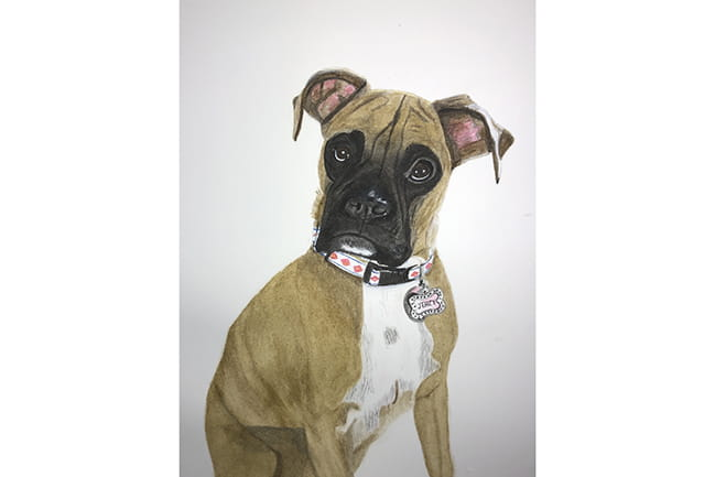 Painting of a boxer puppy