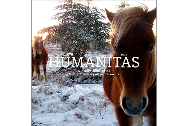 Cover of 2013 Humanitas